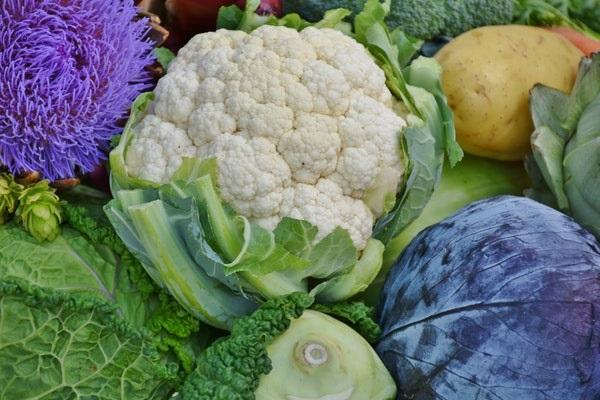 Điểm danh những loại rau củ an toàn, ăn bao nhiêu cũng không sợ thuốc trừ sâu - Ảnh 3