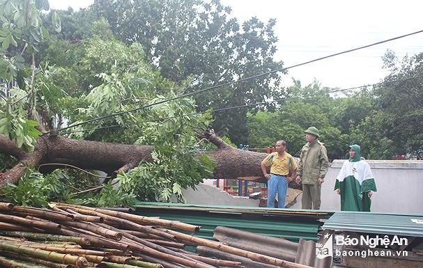 Thiệt hại do bão số 4 chưa xong, Việt Nam lại sắp phải đối phó bão số 5 - Ảnh 1