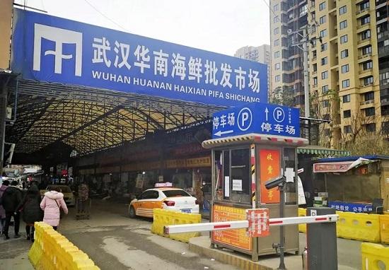 Bệnh viêm phổi lạ ở Trung Quốc xuất hiện tại các nước xung quanh - Ảnh 1