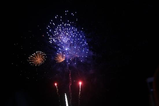 Chùm ảnh: Ngắm nhìn pháo hoa rực rỡ đón chào năm Canh Tý 2020 - Ảnh 8