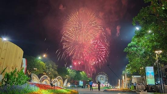 Chùm ảnh: Ngắm nhìn pháo hoa rực rỡ đón chào năm Canh Tý 2020 - Ảnh 11