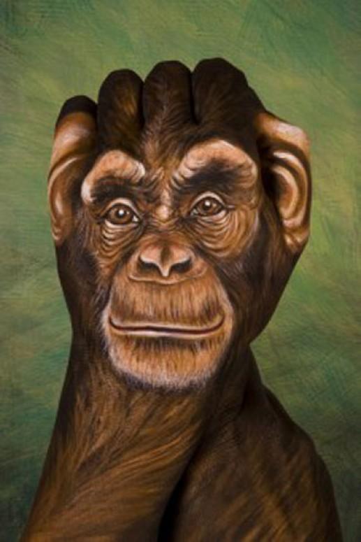 Những bức ảnh động vật đẹp được tạo bởi vật liệu gây sửng sốt cho người xem - Ảnh 2