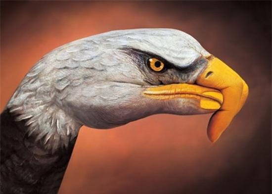 Những bức ảnh động vật đẹp được tạo bởi vật liệu gây sửng sốt cho người xem - Ảnh 9