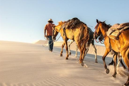 Kì lạ sa mạc có nhiều hồ nước nhất thế giới - Ảnh 6
