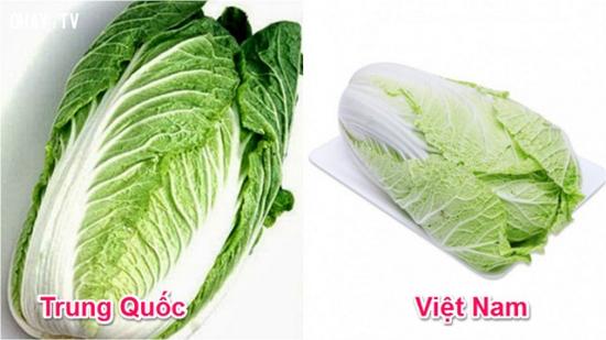 Tuyệt chiêu để phân biệt rau củ Trung Quốc và Việt Nam cho các bà nội trợ - Ảnh 6