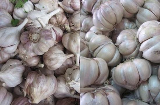 Tuyệt chiêu để phân biệt rau củ Trung Quốc và Việt Nam cho các bà nội trợ - Ảnh 7