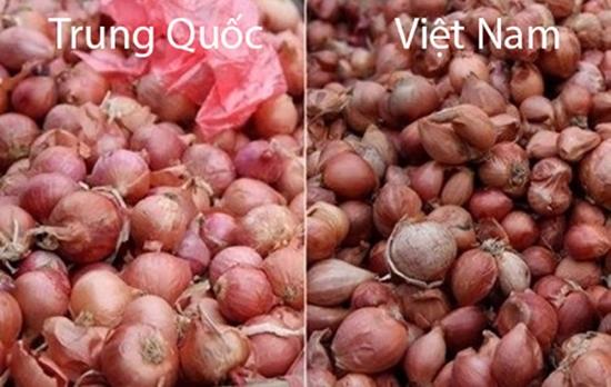 Tuyệt chiêu để phân biệt rau củ Trung Quốc và Việt Nam cho các bà nội trợ - Ảnh 8