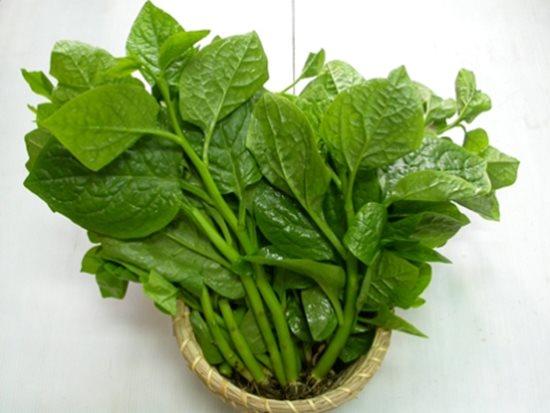 Những sai lầm nguy hiểm khi ăn rau mồng tơi mà ai cũng có thể mắc phải - Ảnh 3