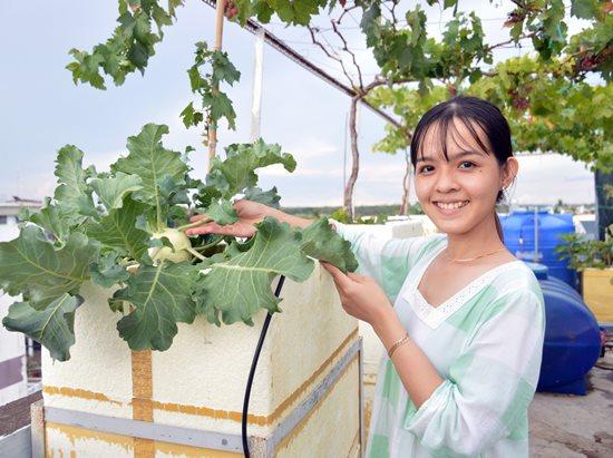 """Ngưỡng mộ """"Khu vườn tình yêu"""" đơm trái ngọt trên sân thượng của cặp vợ chồng trẻ Cà Mau - Ảnh 4"""