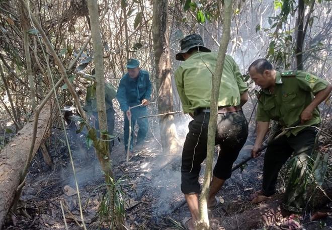 Giám đốc ban Quản lý rừng phòng hộ gián tiếp gây cháy rừng - Ảnh 2