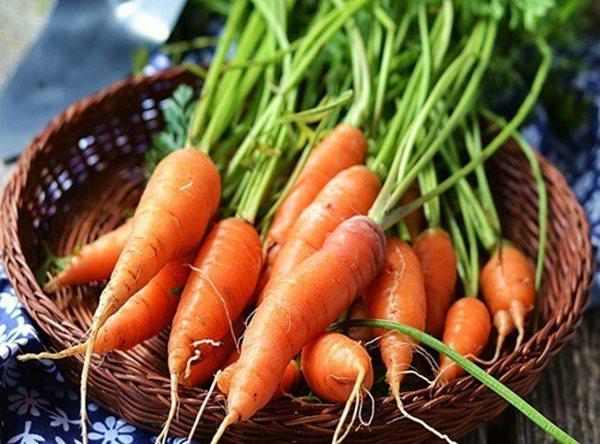 Những sai lầm biến cà rốt thành độc được mà nhiều người đang mắc phải - Ảnh 1