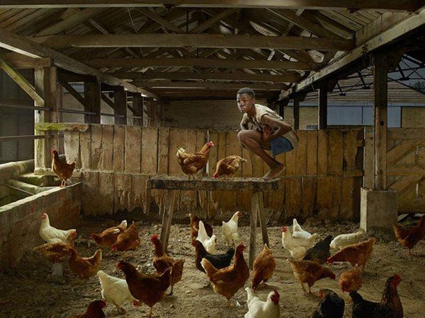 Cậu bé bị nhốt sống chung với gà suốt 22 năm và hành trình hoà nhập lại với con người - Ảnh 1