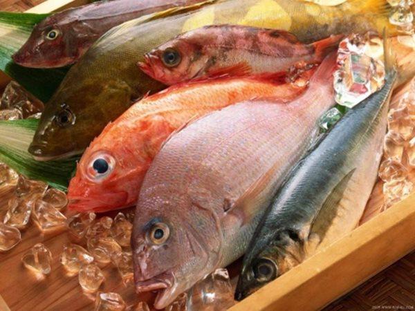 Trẻ hóa, giảm nỗi lo ung thư gan nhờ 5 loại thực phẩm dễ kiếm này - Ảnh 4