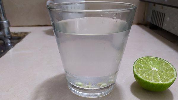 """Nước chanh sẽ thành """"thuốc độc"""" nếu bạn cứ uống bừa để giải khát - Ảnh 2"""