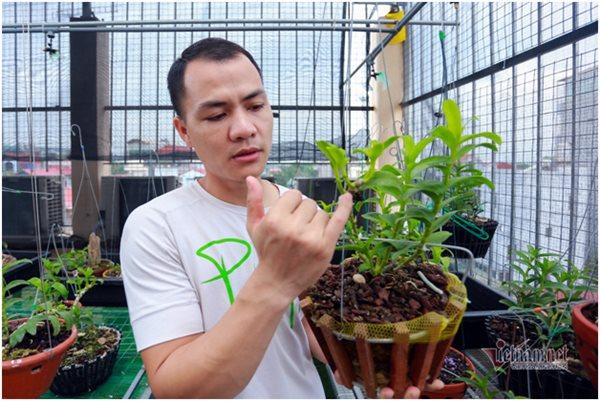 Hai đại gia lan hiếm Hà Thành: Vô tình kiếm tiền tỷ trong lúc thất nghiệp - Ảnh 2