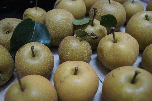 Đừng tưởng lê là trái cây lành mà ăn thả cửa, tránh ngay những tác dụng cực hại - Ảnh 3