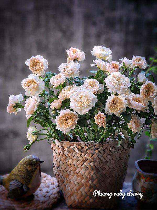 Mẹ trẻ Hà thành gây sốt với trào lưu cắm hoa bằng giỏ cói đẹp mê hồn - Ảnh 6
