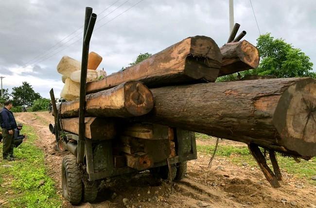 Gia Lai: Phát hiện lâm tặc dùng xe độ chế chở gỗ lậu - Ảnh 1