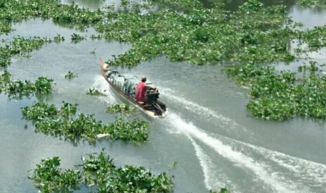 Nhóm buôn lậu truy sát kinh hoàng trên sông, 1 cán bộ hy sinh - Ảnh 1
