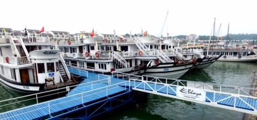 Cảng tàu khách quốc tế Tuần Châu: Diện mạo mới của du lịch Hạ Long - Ảnh 4