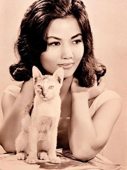Chuyện về Kiều Chinh - nhan sắc Việt thành công nhất tại Hollywood - Ảnh 4