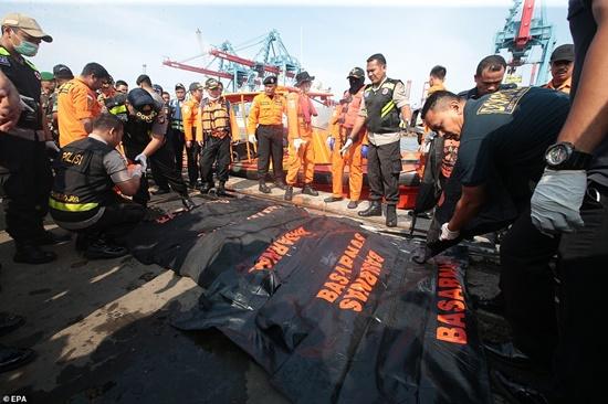 Vụ máy bay Lion Air chở 189 người rơi xuống biển: Đã vớt được 6 thi thể đầu tiên - Ảnh 2