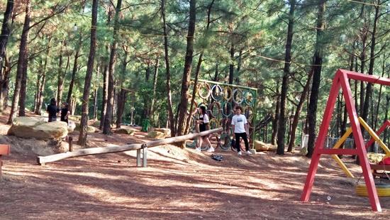 """Công trình trên đất rừng phòng hộ Sóc Sơn """"nằm yên"""" chờ thanh tra - Ảnh 6"""