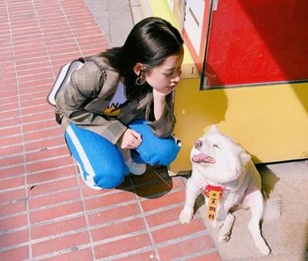 Chi Pu du lịch Đài Loan ngắm pháo hoa cùng bạn trai Hàn Quốc? - Ảnh 3
