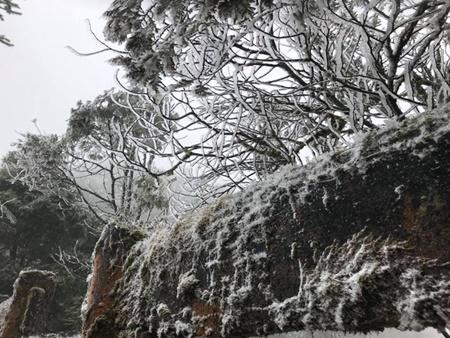 Nhiệt độ giảm sâu, tuyết lại phủ trắng đèo Ô Quý Hồ, Sa Pa - Ảnh 3