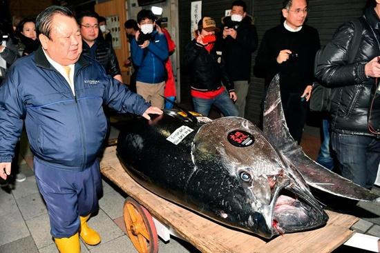 """Đại gia """"bạo tay"""" chi 3,1 triệu USD mua 278 kg cá ngừ, phá vỡ kỷ lục đấu giá tồn tại 6 năm - Ảnh 1"""