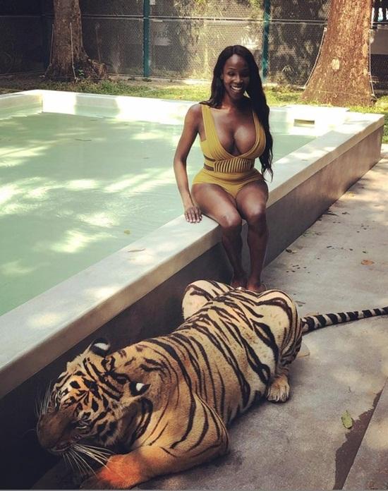 Tân Hoa hậu chuyển giới bị lên án vì diện bikini chụp hình với hổ - Ảnh 1