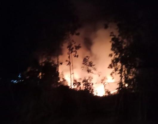 Quảng Ngãi: Thiệt hại 30ha rừng do lửa cháy xuyên đêm - Ảnh 1