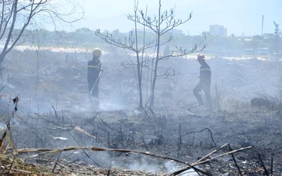 Đà Nẵng: Cháy rừng trên núi Sơn Trà, hàng trăm chiến sĩ dập lửa - Ảnh 1