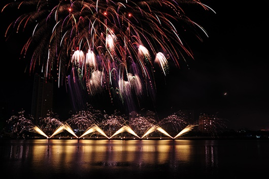 """Lễ hội pháo hoa quốc tế Đà Nẵng: Phần Lan vô địch với màn """"Ra khơi"""" siêu ấn tượng - Ảnh 5"""
