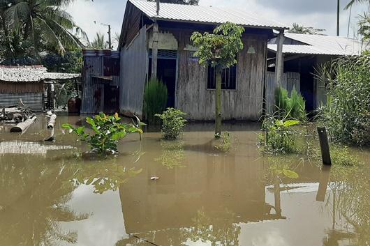 Triều cường dâng cao ở Đồng bằng sông Cửu Long: Nhiều nơi ngập sâu, học sinh nghỉ học - Ảnh 2