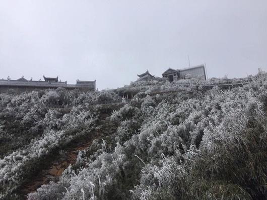 Sapa xuống dưới 0 độ, đỉnh Fansipan phủ trắng băng tuyết như trời Âu vào ngày mùng 3 Tết - Ảnh 4