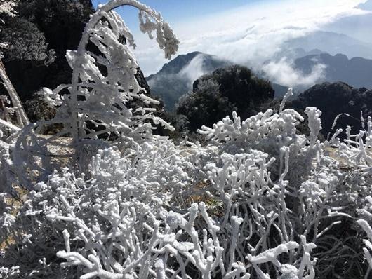 Sapa xuống dưới 0 độ, đỉnh Fansipan phủ trắng băng tuyết như trời Âu vào ngày mùng 3 Tết - Ảnh 8