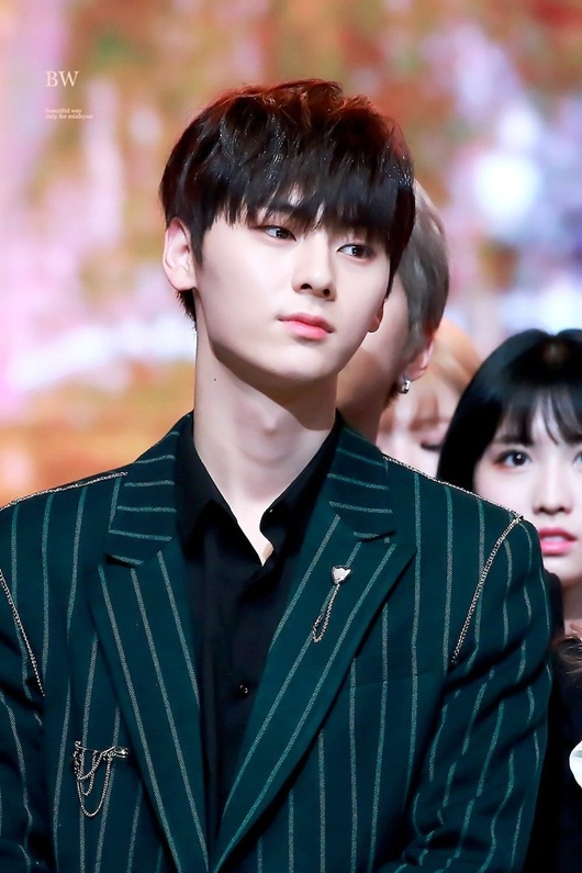 Irene, Jisoo và loạt thần tượng Kpop mà fan hy vọng sẽ tỏa sáng trong diễn xuất - Ảnh 6