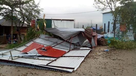 Mưa lớn, dông lốc gây sập nhà, tan hoang vườn cây ăn quả ở Sơn La - Ảnh 1