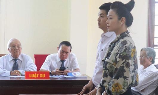 Kháng nghị vụ ca sĩ Nhật Kim Anh giành quyền nuôi con - Ảnh 1