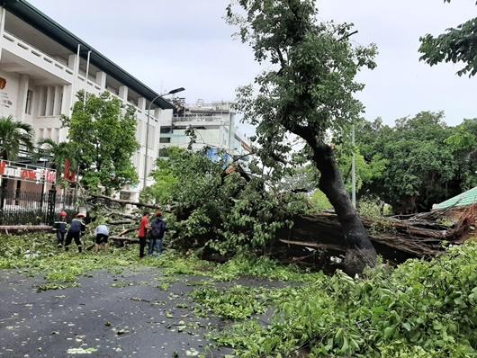 Bão số 5 gây thiệt hại nặng ở miền Trung, 1 người thiệt mạng, hơn 3.000 dân bị cô lập - Ảnh 1