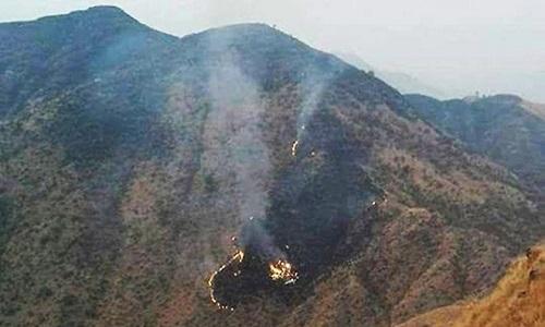 Nhận định sơ bộ về nguyên nhân máy bay rơi ở Parkistan - Ảnh 1
