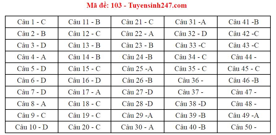 Đáp án, đề thi môn Toán mã đề 103 THPT quốc gia 2018 - Ảnh 3