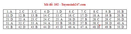 Đáp án, đề thi môn Toán mã đề 101,102,103,104,105 THPT quốc gia 2019 chuẩn nhất, chính xác nhất - Ảnh 2