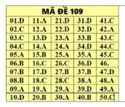 Đáp án môn Toán tất cả các mã đề THPT quốc gia 2019 chuẩn nhất, chính xác nhất (đầy đủ) - Ảnh 9