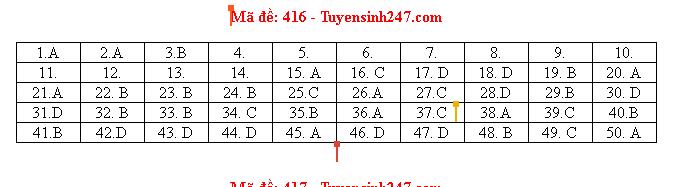 Đáp án đề thi môn tiếng Anh mã đề 416 THPT quốc gia 2019 chuẩn nhất, nhanh nhất - Ảnh 1