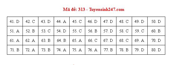 Đáp án, đề thi môn Địa lý mã đề 313 tốt nghiệp THPT 2020 chuẩn nhất, chính xác nhất - Ảnh 1