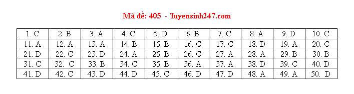Tham khảo đáp án môn tiếng Anh 24 mã đề tốt nghiệp THPT 2020 chuẩn nhất, chính xác nhất - Ảnh 5