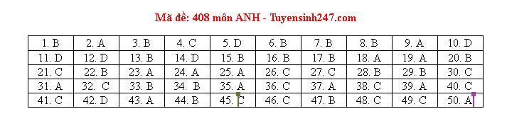 Tham khảo đáp án môn tiếng Anh 24 mã đề tốt nghiệp THPT 2020 chuẩn nhất, chính xác nhất - Ảnh 8