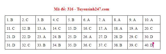 Gợi ý đáp án môn Lịch sử mã đề 316-317-318 tốt nghiệp THPT năm 2020 chuẩn nhất, chính xác nhất - Ảnh 1
